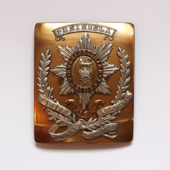 Officer's shoulder belt plate of the 36th Regiment